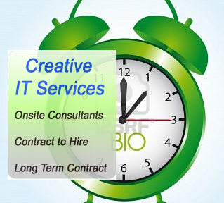 it staffing and consulting services